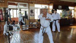 Apr. 18th, 2021 The 2nd Kenshikai Zoom Seminar